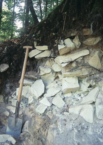 Das Bild zeigt die aufgeschnittene Kante eines bewaldeten Hanges. Unter dunklem Wurzelboden türmt sich gelblich weißer, grober Gesteinsschutt.