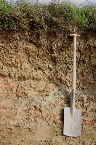 Das Foto zeigt ein rötlich braunes Bodenprofil unter Acker. Rechts ist eine Schaufel angelehnt, um die Tiefe des Profils anzuzeigen.