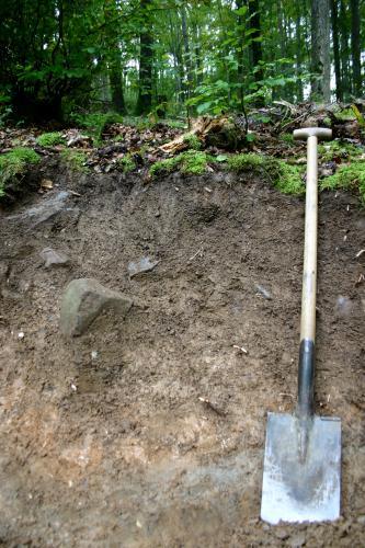 Im Vordergrund ist ein geröllhaltiges Bodenprofil mit einer Schaufel rechts zu sehen. Im HIntergrund befindet sich Wald.