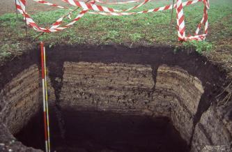 Blick in ein rechteckig aufgegrabenes, 160 cm tiefes Bodenprofil auf einem Acker. Die oberen 20 cm des Profils bestehen aus schwarzbraunem Boden, darunter folgt mittelbraunes, streifiges bis fleckiges sowie, ab 1 m Tiefe, wieder schwarzes Material.