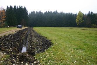 Das Bild zeigt links einen Drängraben im Niedermoor. Im Vergleich zur rechts angrenzenden Wiese ist der Boden des Grabens schwarz und mit Wasser gefüllt. Im Hintergrund steht Wald.