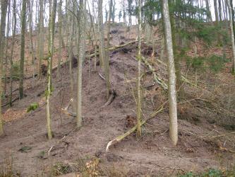 Zu sehen ist ein bewaldeter Hang, an dessen Fuß große Mengen an Schlamm aufgehäuft sind. Im oberen Bereich des Hangs ist eine Abrisskante sichtbar.