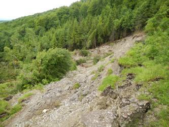 Blick auf eine von rechts oben nach links unten verlaufende Hangrutschung. Hangaufwärts stehen Nadelbäume entlang der Schneise.