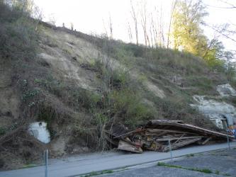 Blick auf eine von links oben nach rechts unten verlaufende Hangrutschung. Der Hang ist an den nicht gerutschten Stellen mit Sträuchern und dünnen Bäumen bewachsen. Unten rechts liegen Trümmerteile.