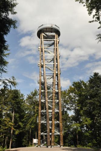 Blick auf einen aus mehreren hohen Baumstämmen gebildeten Aussichtsturm. Der Turm steht auf einer Waldlichtung. Eine metallene Treppe führt hoch auf eine runde, ebenfalls metallene Aussichtsplattform mit Geländer.