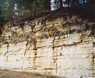 Das Bild zeigt eine weißgraue bis gelblich graue, waagrecht gebankte Steinwand. Den unteren Teil durchziehen senkrechte Risse. Im oberen Teil ist das Gestein stärker zerfallen und zudem bewachsen.