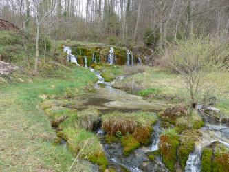 Blick auf stark bemooste, von einem kleinen Wasserfall überspülte aufgeschichtete Felsen unterhalb eines lichten Waldes. Im Vordergrund fließt das Wasser über weitere, hier jedoch locker stehende bemooste Felsen.
