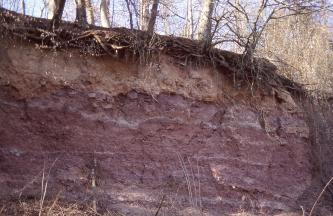 Blick auf eine rötlich graue Gesteinswand. Auf der Kuppe liegt gelblich braunes Erdreich auf, darüber das Wurzelwerk von Bäumen.
