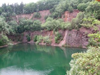 Das Bild zeigt eine stark zugewachsene Steinbruchwand mit davor liegendem See. Die Gesteine haben eine rötlich braune Farbe.