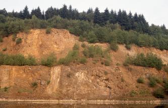 Blick auf die Abbauwand eines Steinbruchs. Zwischen dem rötlich braunen Gestein wachsen Sträucher und kleine Bäume. Die Kuppe ist bewaldet. Am Fuß der Bruchwand steht Wasser.