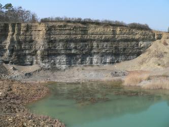 Blick auf eine Steinbruchwand. Mehrere waagrecht verlaufenden Schichten sind zu sehen: von hellbraun (oben) bis blaugrau (unten). Dazwischen verlaufen dunkle Streifen. Der Boden des Bruches ist teils mit Wasser gefüllt.