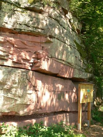 Blick auf eine von Bäumen beschattete Gesteinswand. Das Gestein ist bankig aufgeschlossen, mit unten rötlichen und darüber grünlichen Farbtönen. Rechts steht eine Hinweistafel.