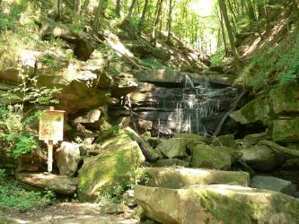 Blick in eine enge, schattige Schlucht mit Bewaldung sowie einem kleinen Wasserfall im Vordergrund. Davor liegende Steinblöcke sind grünlich verfärbt und bemoost. Auch an den Hängen findet sich offenliegendes Gestein mit Bewuchs.