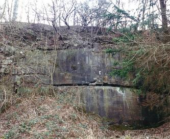 Blick auf eine stark zugewachsene Gesteinswand. Zwei übereinanderliegende, violett-graue Steinblöcke sind noch zu erkennen.