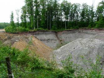 Das Bild zeigt die trichterförmigen Wände eines Steinbruches. Das Gestein, an einem Waldrand gelegen, ist grau mit rötlichen Stellen. Im Vordergrund sind zwei Abraumhalden aufgehäuft, die linke ist orangefarben, die rechte grau.