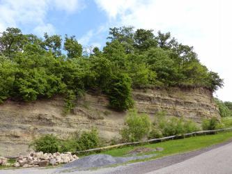 Das Bild zeigt einen hangaufwärts an einer Straße verlaufenden Gesteinsaufschluss. Die waagrecht gebankten, graubraunen Schichten sind oben mit Bäumen und Sträuchern bewachsen. Links vorne, am unteren Teil des Hanges, liegen lose Steine.