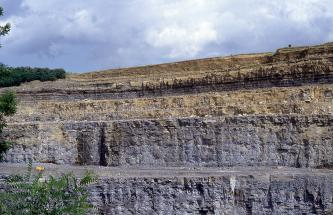 Gezeigt werden hier mehrere Sohlen eines Steinbruches. Die obersten Sohlen sind gelblich braun und teilweise mit grauen Streifen. Die beiden unteren Sohlen sind höher und gelblich grau bis grau gefärbt.
