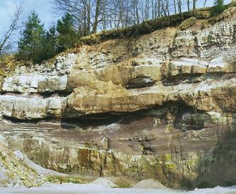 Das Bild zeigt eine nach rechts ansteigende Steinbruchwand. Auf grünliche und braune Schichten folgen zwei Reihen vorspringender Gesteinsbänke, ehe oben unter der bewachsenen Kuppe das Gestein wieder feinkerbiger wird.