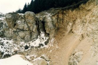 Blick auf eine leicht beschneite Steinbruchwand. Rechts steht helles, instabiles Material an. Links stehen gerundete Felsnasen heraus. Im Hintergrund liegt ein Wald.