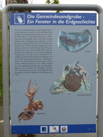 Blick auf eine farbige Schautafel zur Gemeindesandgrube. Die Tafel ist von einem Metallrahmen eingefasst und zeigt Abbildungen verschiedener Fossilien, die in der Grube gefunden wurden.