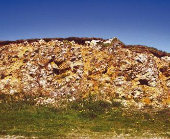 Blick auf einen wie aufgeschnitten wirkenden Hügel, in dem Bodenmaterial und Gesteinsformationen fest zusammengebacken sind.