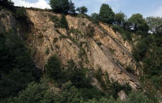 Helle Gesteine in einem ehemaligen, zum Teil schon deutlich bewachsenen Steinbruch. Die Gesteine sind schräg gestellt und fallen nach rechts unten ein.