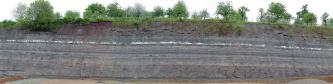 Panoramabild einer Steinbruchwand. Unter der mit Bäumen bestandenen Kuppe verlaufen dunkelbraune, graue, weißliche, violette und bläuliche Schichten.