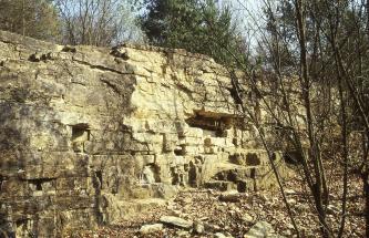 Aufgelassener Steinbruch aus teils dunkel angewittertem hellgelbem Gestein. Über dem Steinbruch wachsen Büsche. Am rechten Rand ragen einige Äste ins Bild.