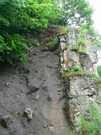 Hier sieht man links im Bild eine senkrecht aufragende, dunkelgraue Gesteinswand, an die sich rechts hellere Felsblöcke anlehnen. Oben ist dichter Bewuchs erkennbar, aber auch zwischen den Felsblöcken rechts sprießen Grünpflanzen.