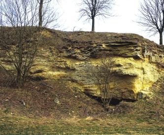 Man sieht eine von Bäumen bewachsene Böschung, die im mittleren Bereich von gelblich braunem Gestein durchzogen wird. Rechts unten ist eine Nischenhöhle erkennbar.