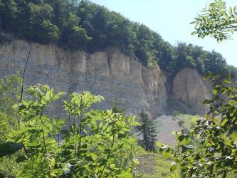 Blick auf eine hohe und breite Felswand, bei der rechts ein größeres Stück herausgebrochen und abgerutscht ist. Die Felswand weist waagrecht verlaufende, bläuliche Streifen auf. Ihre Kuppe ist bewaldet.