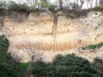 Blick auf eine hohe, hellbraune Lösswand mit Bewuchs an Fuß und oberem Rand. Der Aufschluss wird von einer vertikalen Rinne in der Bildmitte gefurcht. Zudem verlaufen drei unterschiedlich breite, orangefarbene Bänder durch die Wand.