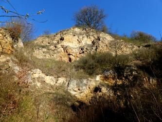 Blick auf einen kegelförmigen Gesteinsaufschluss, umrandet von Gras, Sträuchern und Bäumen..
