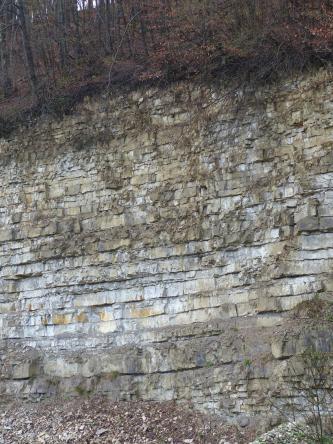 Am unteren Ende eines steilen Waldhanges ist eine offene Gesteinswand zu sehen. Das oben grünlich bis gelblich graue, unten weißliche Gestein ist in zahlreichen dünnen Schichten gebankt. Am Fuß der Wand liegt feinscherbiges Schottergestein.