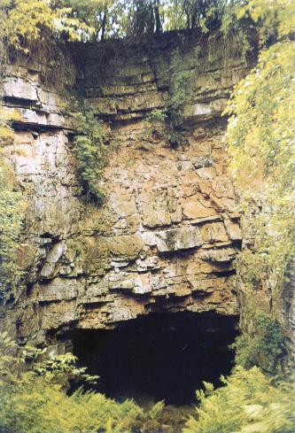 Das Bild zeigt eine rötlich braune, zerklüftete und bewachsene Steinwand mit einer mundförmigen schwarzen Öffnung am unteren Ende.