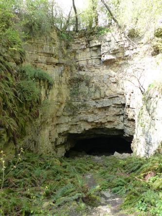 Das Bild zeigt eine links über Eck gehende, hellbraune bis weißliche Gesteinswand mit rechteckiger Öffnung am Fuß. Vor dem schwarzen Loch haben sich am Boden Farnwedel ausgebreitet.