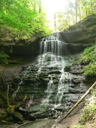 Blick auf einen mehrstufigen, über dunkelgraues, schartiges bis buckliges Gestein führenden Wasserfall. An der oberen Gesteinskante zeigen sich teils dicht stehende Bäume.