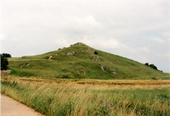 Blick auf einen grünen Hügel, aus dem an mehreren Stellen Felsen herausragen. Im Vodergrund befindet sich eine hohe Wiese sowie ein Getreidefeld.