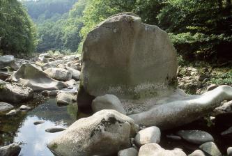 Blick auf zahlreiche, in einem Flussbett liegende Felsblöcke. Ein besonders großer Block im Vordergrund hat die Form eines aufgestellten Schildes. Die Ufer des Flusses sind bewaldet.