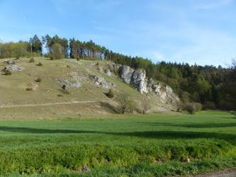 Hinter eine Wiese erhebt sich in der rechten Bildhälfte ein hellgrüner bis gräulicher Hang, welcher von großen Felsen durchsetzt ist. Von der rechten Seite aus ist der Hang bis zu Kuppe mit Bäumen bewachsen.