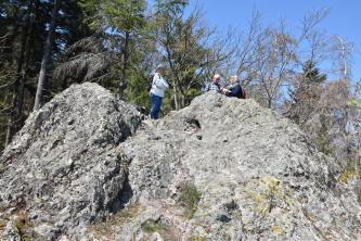 Zu sehen sind hier zwei hellgraue Felsenhöcker, die Wanderer als Aussichtspunkt nutzen. Im Hintergrund stehen hohe Nadelbäume.
