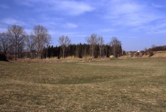 Unter einem violett-blauen Himmel breitet sich eine flache grüne Senke aus. In der Mitte ist eine dunklere Vertiefung erkennbar. Am Rand der Senke steht Wald.