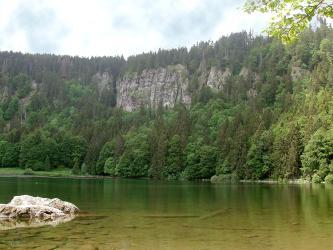 Blick auf einen grünen See mit flachem Ufer und kleiner Felseninsel links im Vordergrund. Dahinter ragt eine steile, von Wald eingerahmte graue Felswand auf.