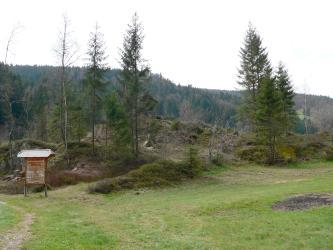 Das Bild zeigt eine hochgelegene Wiese mit einer höckerartigen Erhebung aus Gesteins- und Bodenmaterial. Auf und neben dem Höcker wachsen Bäume und Sträucher. Links steht eine Hinweistafel. Im Hintergrund sind bewaldete Berge erkennbar.