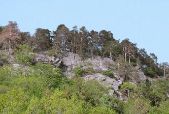 Das Foto zeigt einen leicht gerundeten, nach rechts abfallenden Berghang, dessen Kuppe aus großen Felsblöcken und -platten besteht. Auf den Felsen sowie unterhalb davon wachsen zahlreiche Bäume.