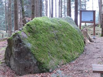 Das Bild zeigt einen mächtigen, zeltförmigen Steinblock, der auf Waldboden aufliegt. Die rechte Seite des Steins ist fast ganz mit Moos bewachsen. Im Hintergrund stehen Bäume sowie ein Hinweisschild.