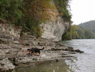 Blick auf das felsige und steinige Ufer eines breiten Flusses. Im Vordergrund links ist das Gestein flach und treppenartig ausgebildet, im Hintergrund dagegen als steil aufragende Wand. Die Steilwand ist oben und an der Seite bewachsen.