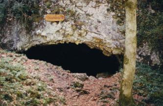 Das Foto zeigt eine bleiche, von Pflanzen überwucherte Felswand, in der sich unten eine mundähnliche, längliche Höhlenöffnung befindet.