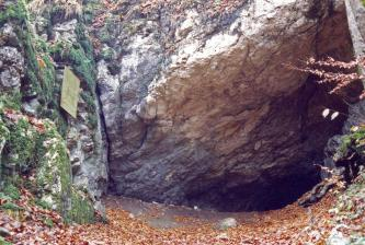 Blick auf eine stark bewachsene, links zum Vordergrund hin abknickende Felswand. Nach rechts hin öffnet sich der fast dreieckige Eingang zu einer Höhle.