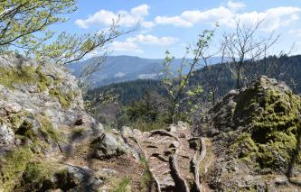 Im Vordergrund dieses Bildes, zu den Rändern hin, befinden sich zwei Felshöcker. Sie sind gerundet und bemoost. Zwischen den Höckern geht der Blick auf bewaldete Bergrücken.